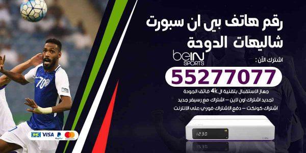 رقم هاتف بين سبورت شاليهات الدوحة